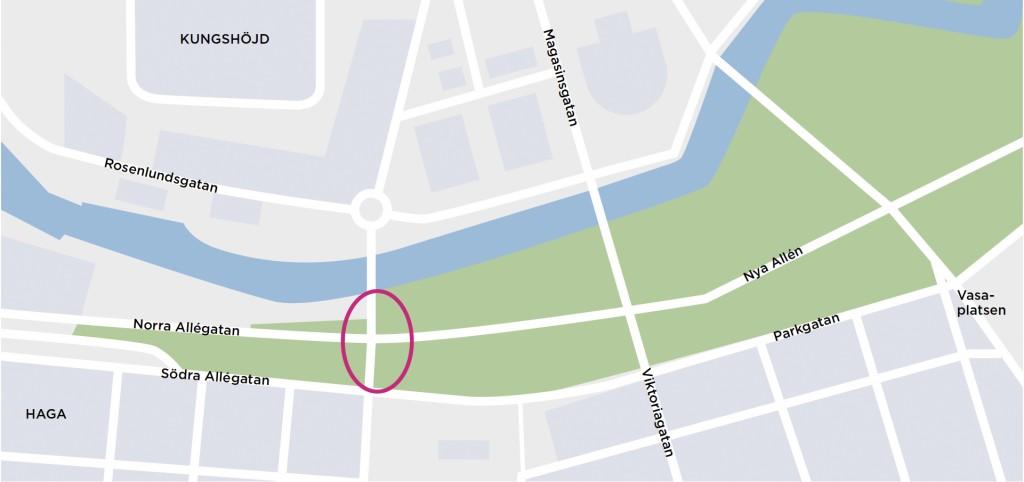 Varför ljuger Göteborgs Stad om stadens träd?